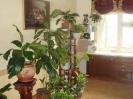 Гостевой дом в Лазаревском_1